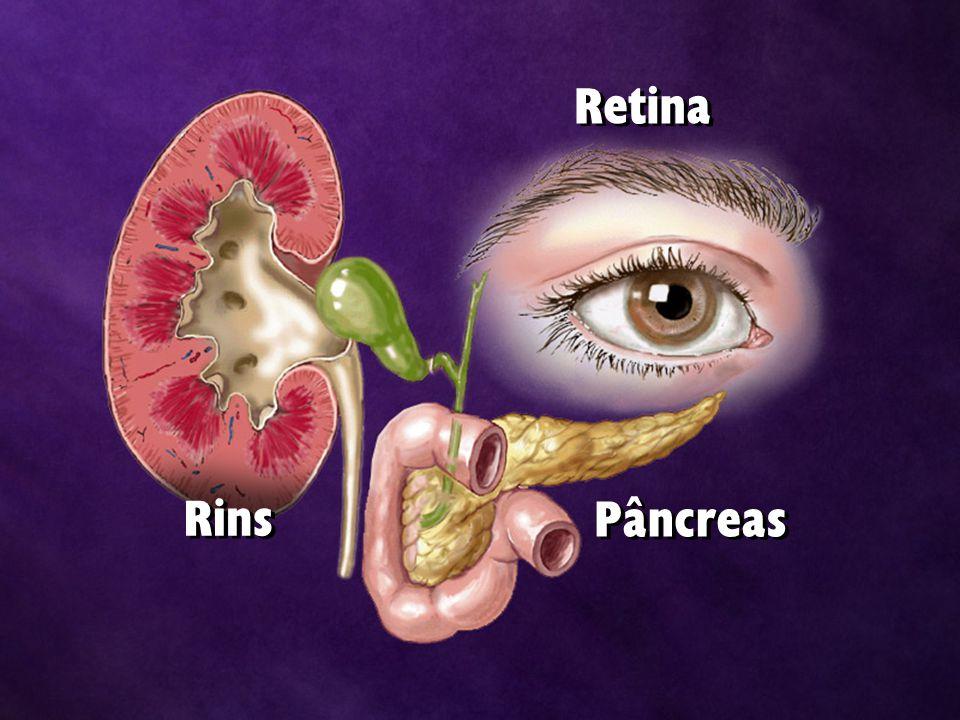 Retina Rins Pâncreas
