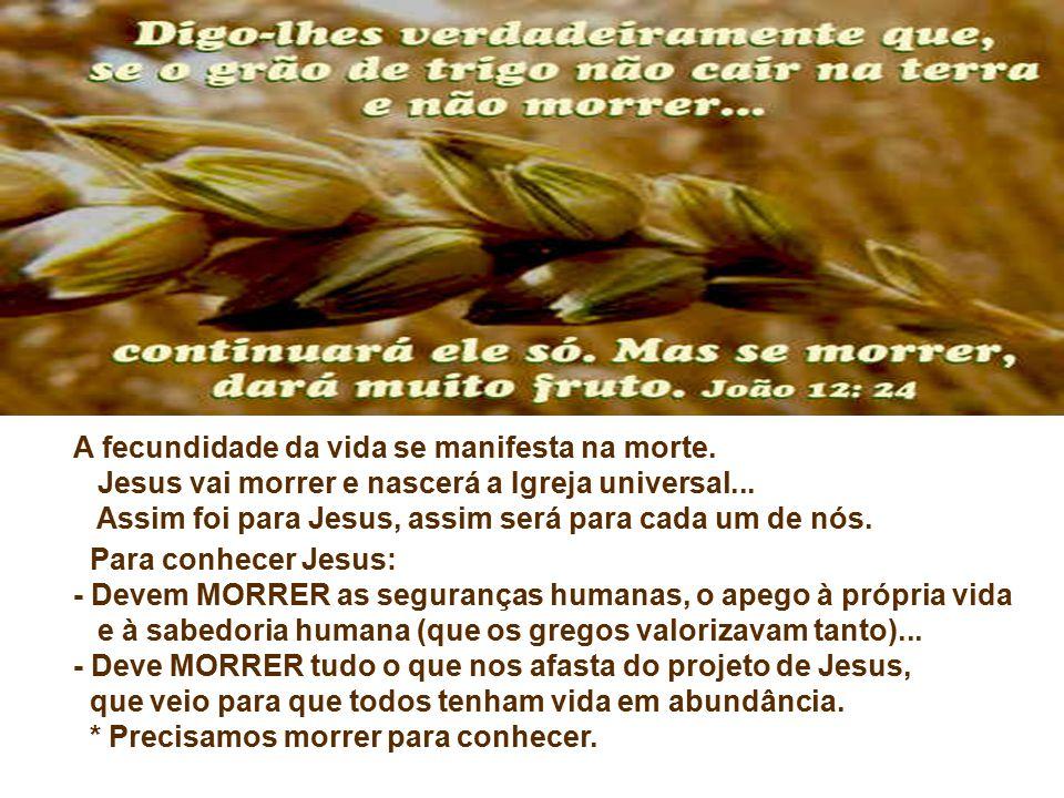 A fecundidade da vida se manifesta na morte.Jesus vai morrer e nascerá a Igreja universal...