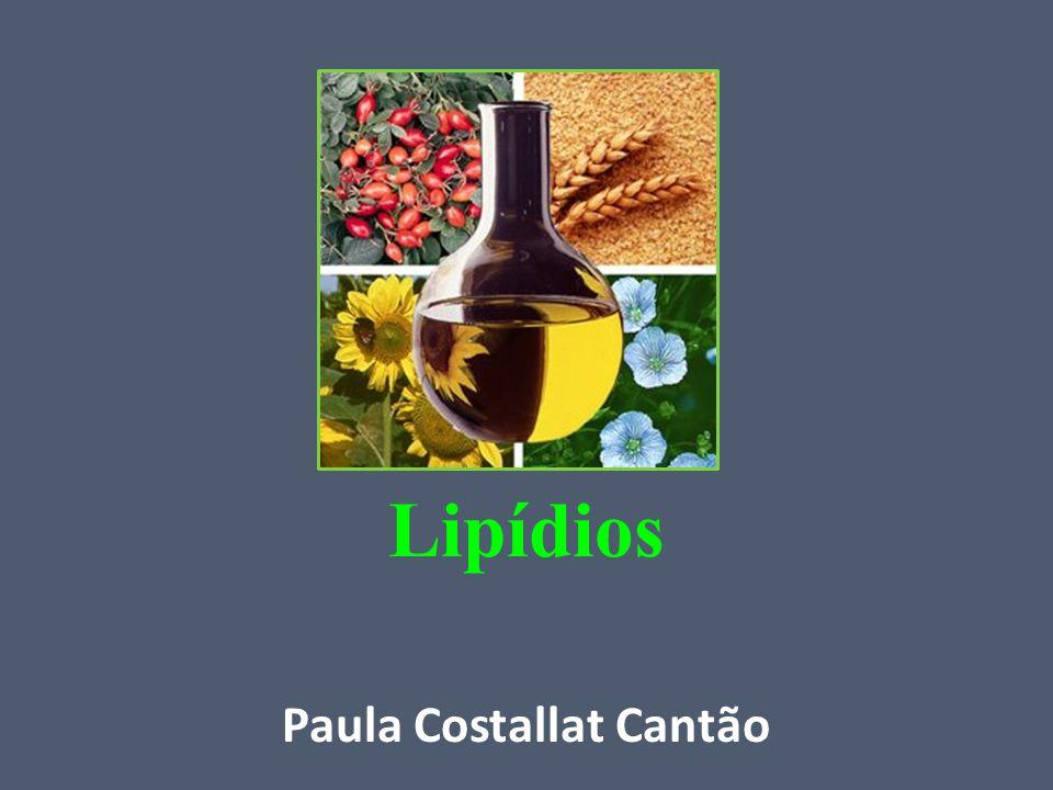 Lipídios Características: -Insolubilidade em água; -Solubilidade em certos solventes orgânicos (álcool, acetona, etc.); -Possuem moléculas apolares (sem carga elétrica); -Não possuem afinidade com a água.