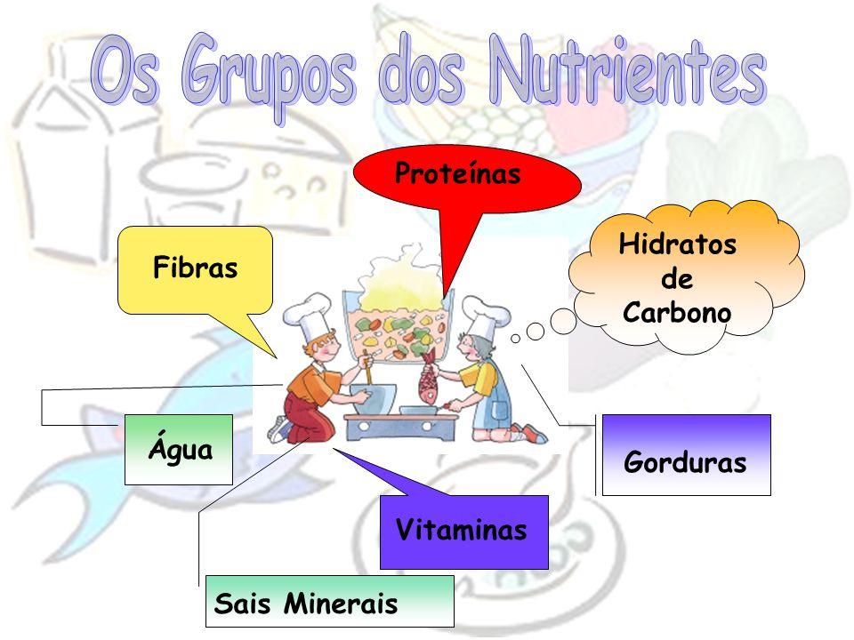 Hidratos de Carbono Proteínas Fibras Vitaminas Água Gorduras Sais Minerais