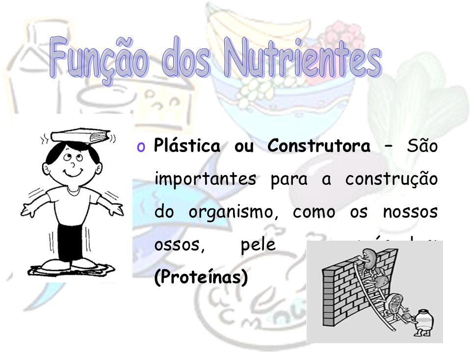 oPlástica ou Construtora – São importantes para a construção do organismo, como os nossos ossos, pele e músculos; (Proteínas)