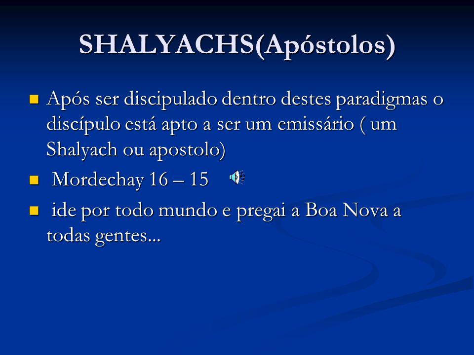 SHALYACHS(Apóstolos) Após ser discipulado dentro destes paradigmas o discípulo está apto a ser um emissário ( um Shalyach ou apostolo) Após ser discipulado dentro destes paradigmas o discípulo está apto a ser um emissário ( um Shalyach ou apostolo) Mordechay 16 – 15 Mordechay 16 – 15 ide por todo mundo e pregai a Boa Nova a todas gentes...