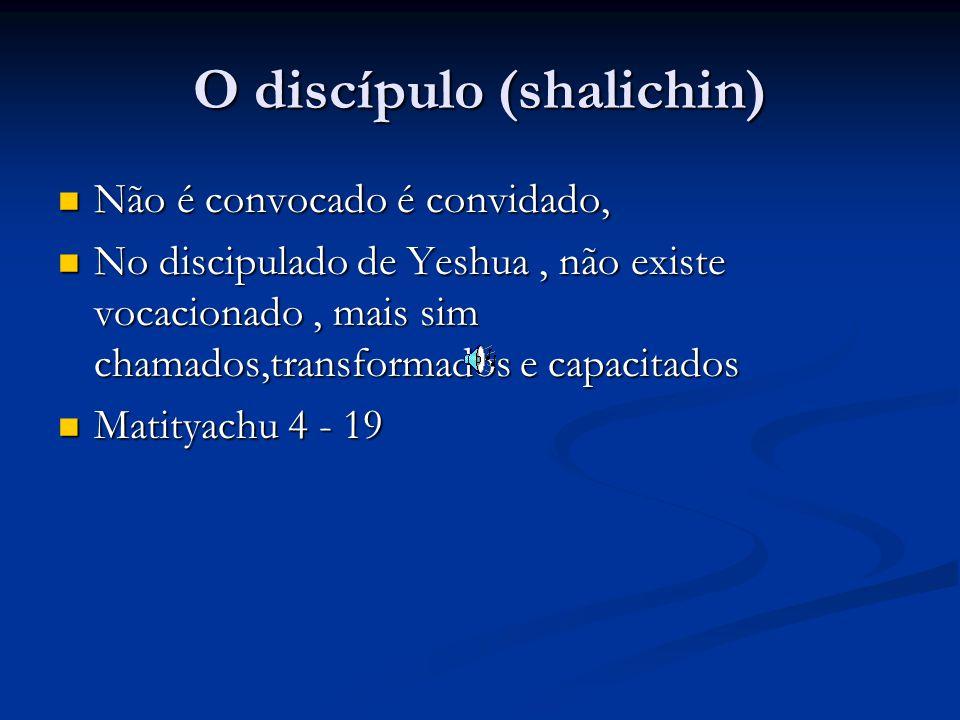 O discípulo (shalichin) Não é convocado é convidado, Não é convocado é convidado, No discipulado de Yeshua, não existe vocacionado, mais sim chamados,transformados e capacitados No discipulado de Yeshua, não existe vocacionado, mais sim chamados,transformados e capacitados Matityachu 4 - 19 Matityachu 4 - 19