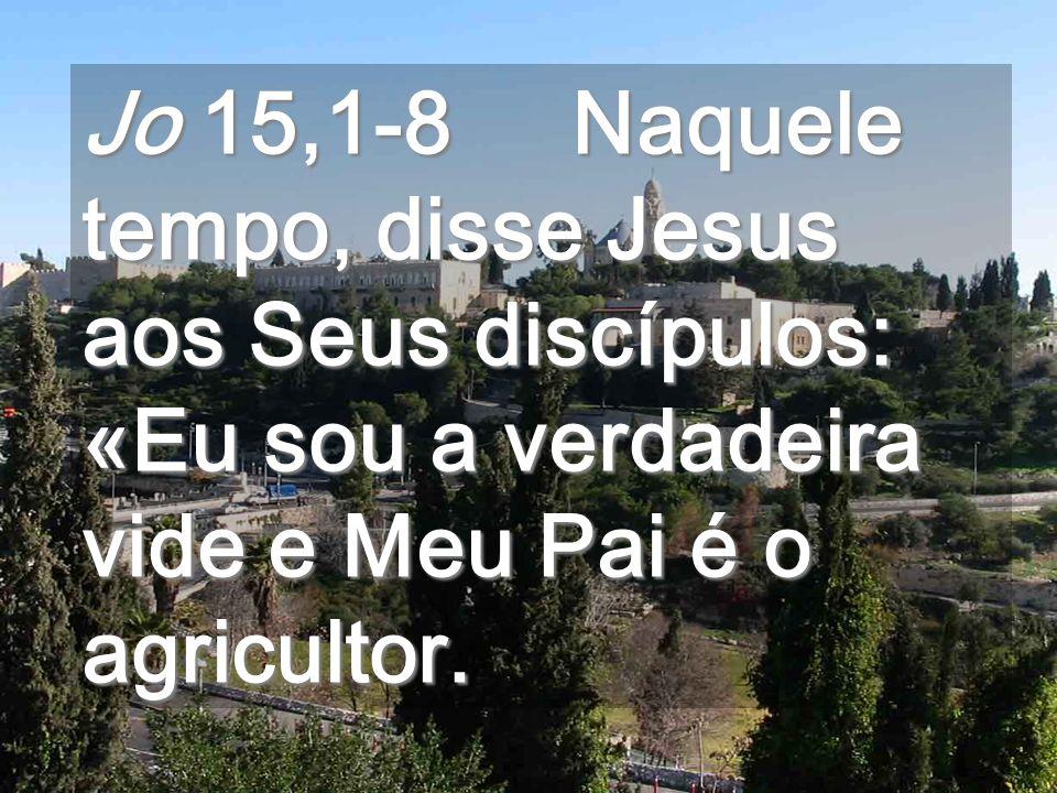 Jo 15,1-8 Naquele tempo, disse Jesus aos Seus discípulos: «Eu sou a verdadeira vide e Meu Pai é o agricultor.