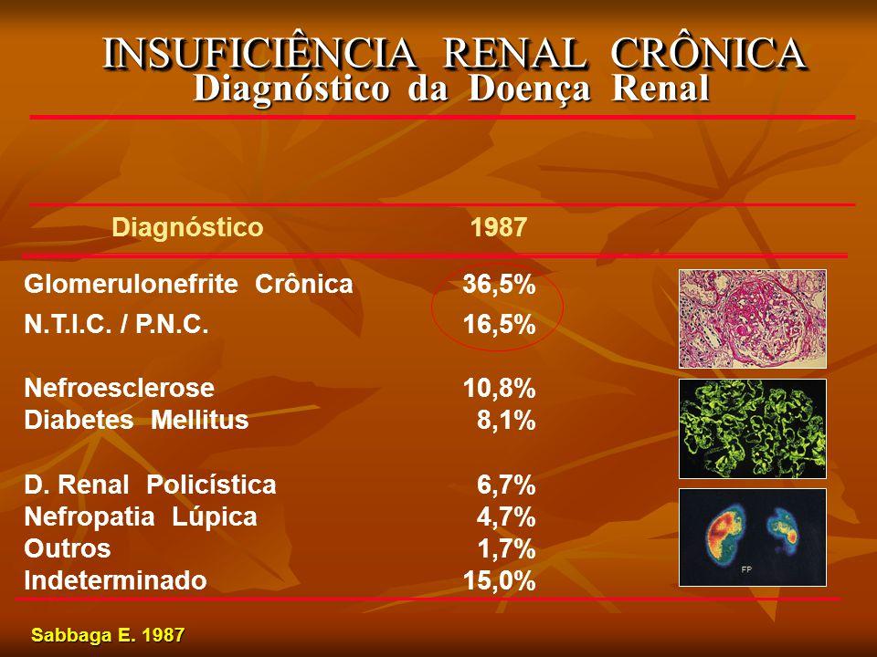 INSUFICIÊNCIA RENAL CRÔNICA Diagnóstico da Doença Renal Diagnóstico 1987 Glomerulonefrite Crônica36,5% N.T.I.C. / P.N.C.16,5% Nefroesclerose10,8% Diab