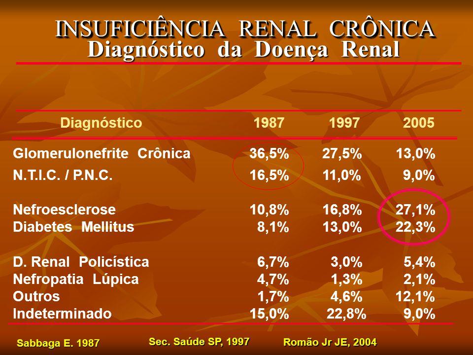 INSUFICIÊNCIA RENAL CRÔNICA Diagnóstico da Doença Renal Diagnóstico 1987 1997 2005 Glomerulonefrite Crônica36,5% 27,5% 13,0% N.T.I.C.