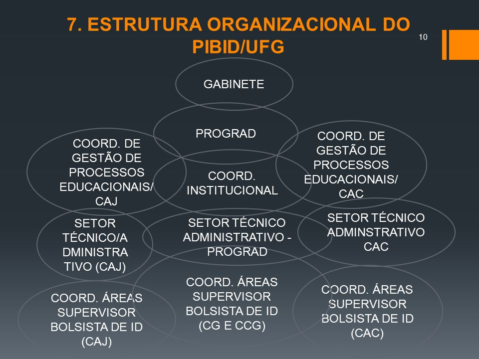 7. ESTRUTURA ORGANIZACIONAL DO PIBID/UFG GABINETE PROGRAD COORD. INSTITUCIONAL COORD. DE GESTÃO DE PROCESSOS EDUCACIONAIS/ CAJ COORD. DE GESTÃO DE PRO