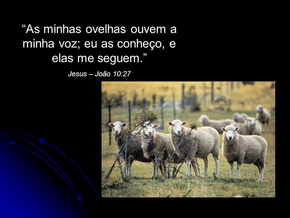 """""""As minhas ovelhas ouvem a minha voz; eu as conheço, e elas me seguem."""" Jesus – João 10:27"""