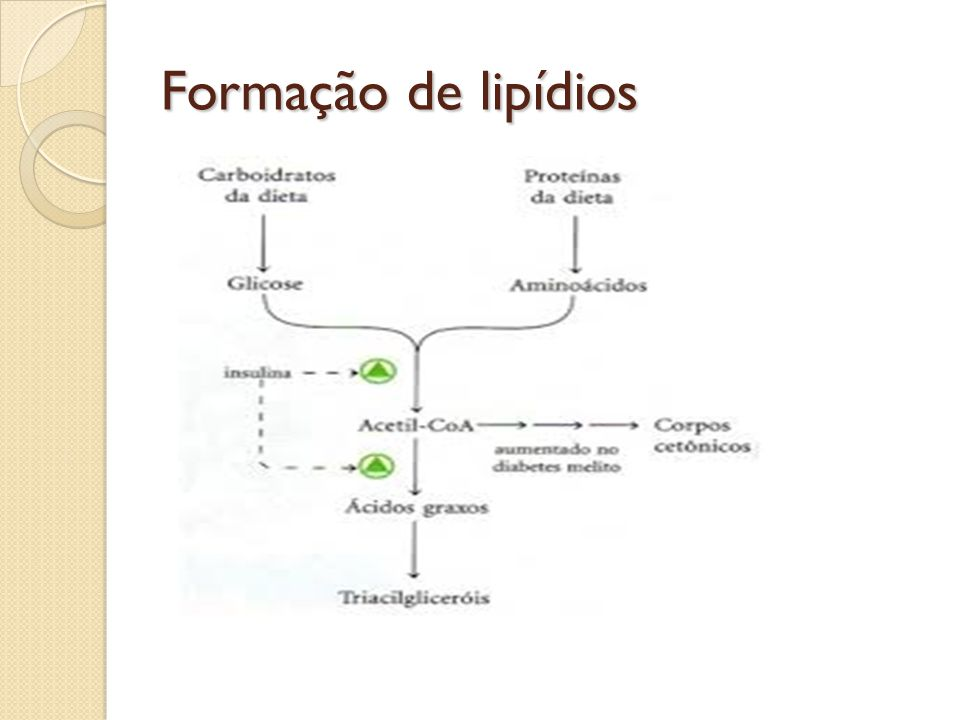 Gorduras Saturadas Gordura saturada é a gordura que consiste de triacilglicerídios que contém somente ácidos graxos saturados.