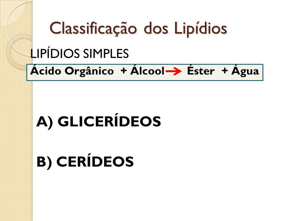Classificação dos Lipídios LIPÍDIOS SIMPLES Ácido Orgânico + Álcool Éster + Água A) GLICERÍDEOS B) CERÍDEOS