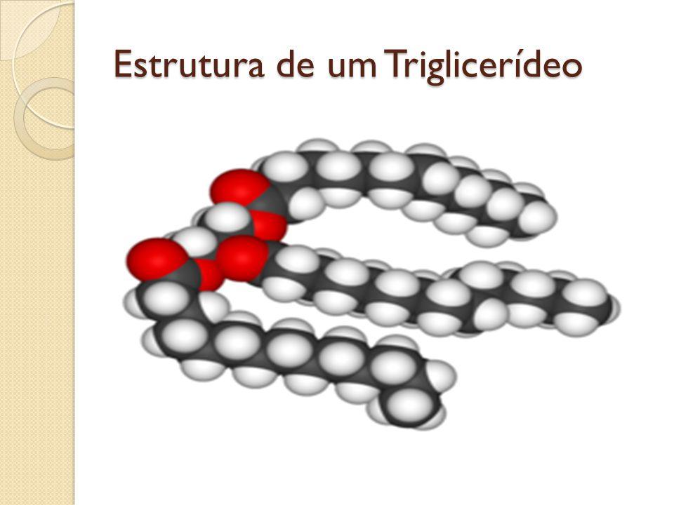 Tipos de glicerídeos Em relação ao ácido graxo