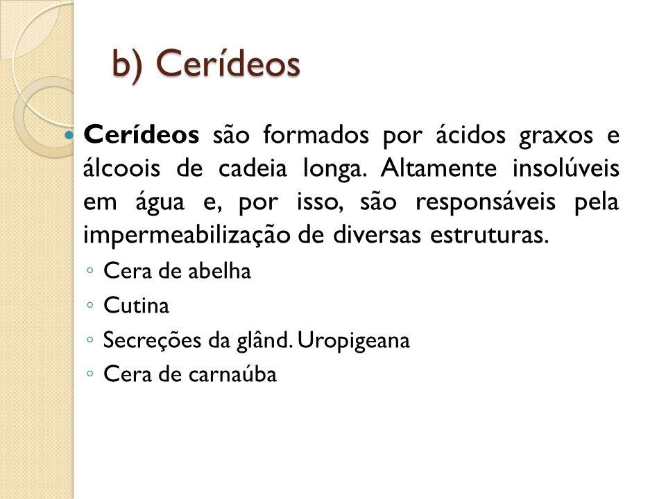 b) Cerídeos Cerídeos são formados por ácidos graxos e álcoois de cadeia longa.