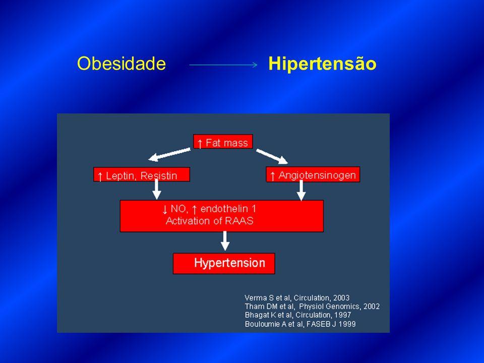 Obesidade Hipertensão