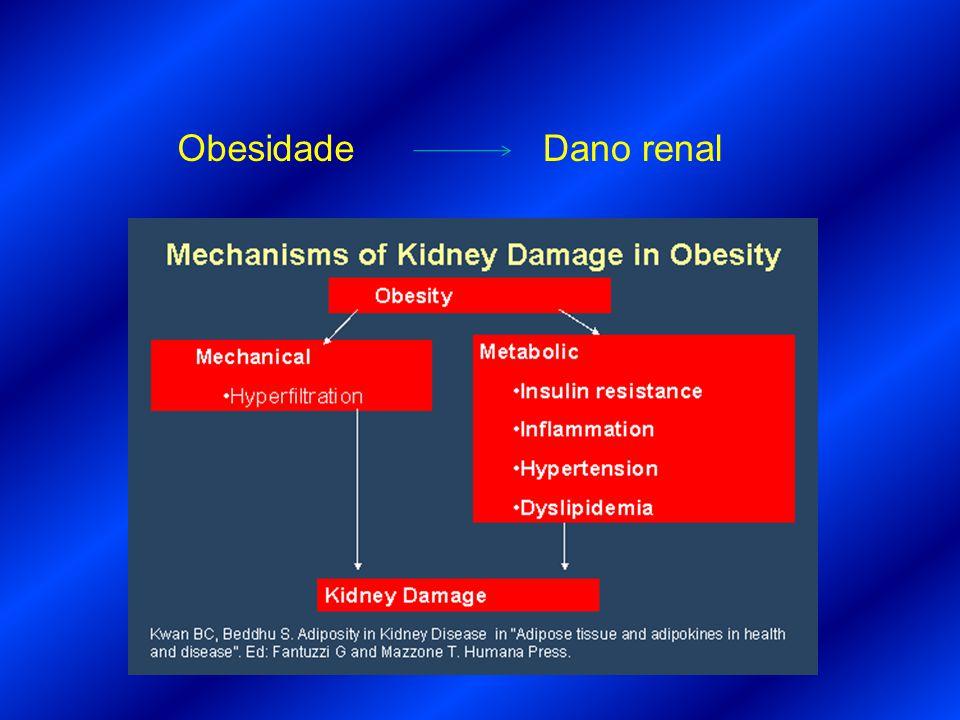 Obesidade Dano renal