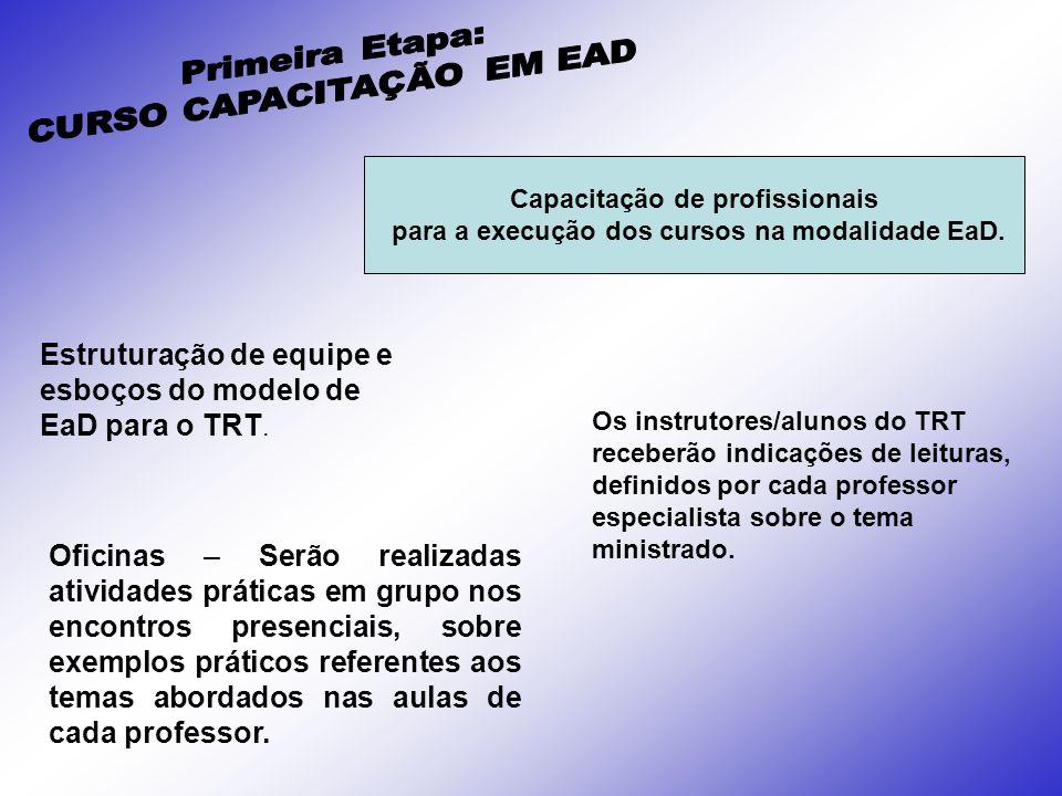 Estruturação de equipe e esboços do modelo de EaD para o TRT. Os instrutores/alunos do TRT receberão indicações de leituras, definidos por cada profes