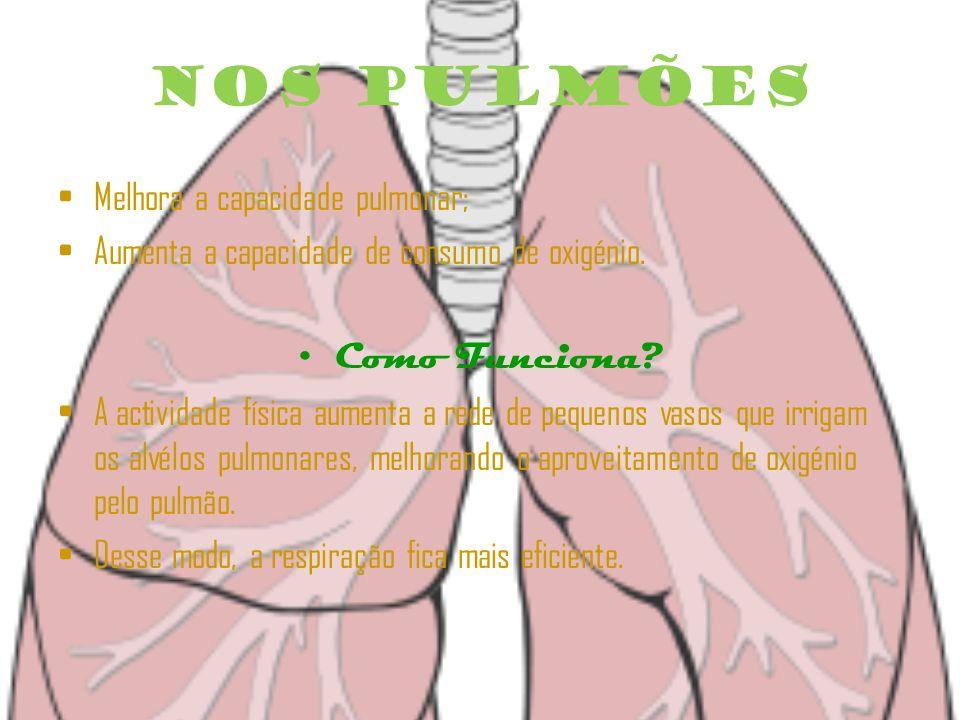 Nos Pulmões Melhora a capacidade pulmonar; Aumenta a capacidade de consumo de oxigénio.