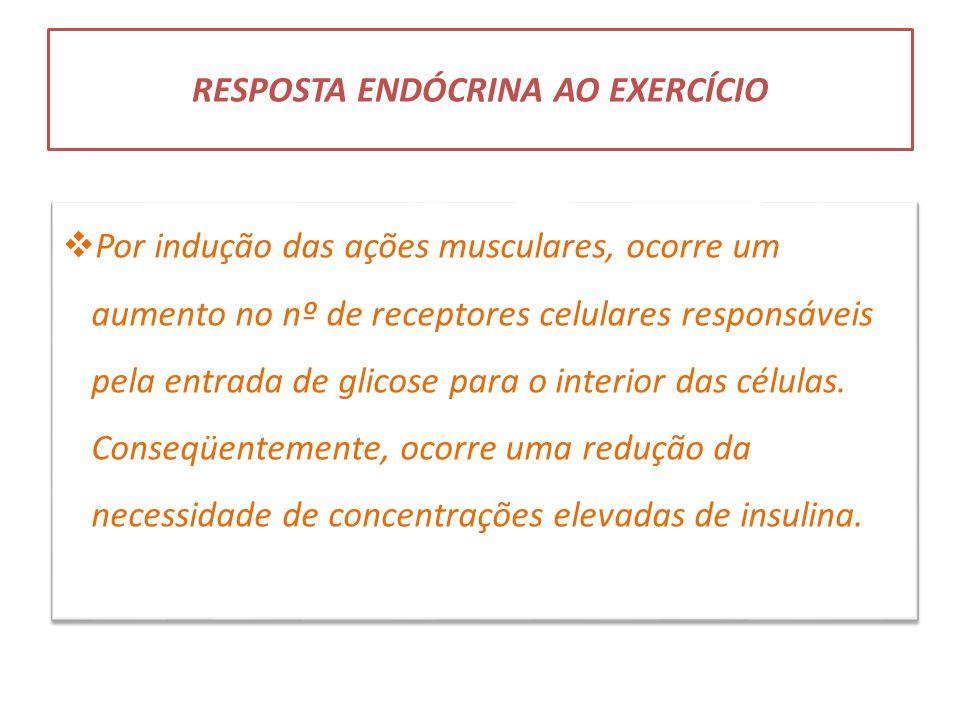 RESPOSTA ENDÓCRINA AO EXERCÍCIO  Por indução das ações musculares, ocorre um aumento no nº de receptores celulares responsáveis pela entrada de glico