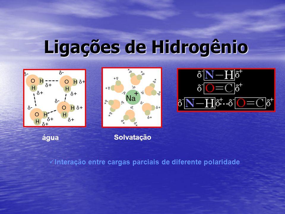 Ligações de Hidrogênio água Solvatação Interação entre cargas parciais de diferente polaridade