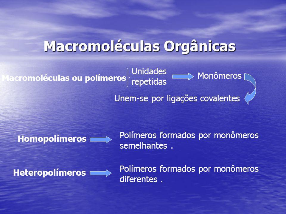 Macromoléculas Orgânicas Macromoléculas Orgânicas Macromoléculas ou polímeros Unidades repetidas Monômeros Unem-se por ligações covalentes Homopolímer