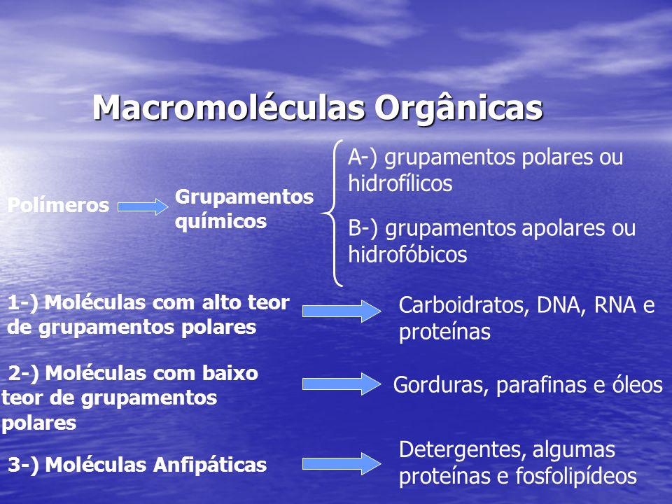 Macromoléculas Orgânicas Polímeros Grupamentos químicos A-) grupamentos polares ou hidrofílicos B-) grupamentos apolares ou hidrofóbicos 1-) Moléculas