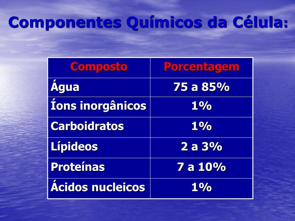Componentes Químicos da Célula : CompostoPorcentagem Água 75 a 85% Íons inorgânicos 1% Carboidratos1% Lípideos 2 a 3% Proteínas 7 a 10% Ácidos nucleic