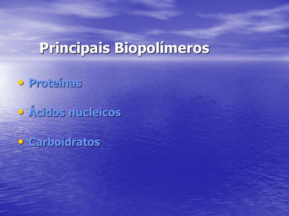 Principais Biopolímeros Proteínas Proteínas Ácidos nucleicos Ácidos nucleicos Carboidratos Carboidratos