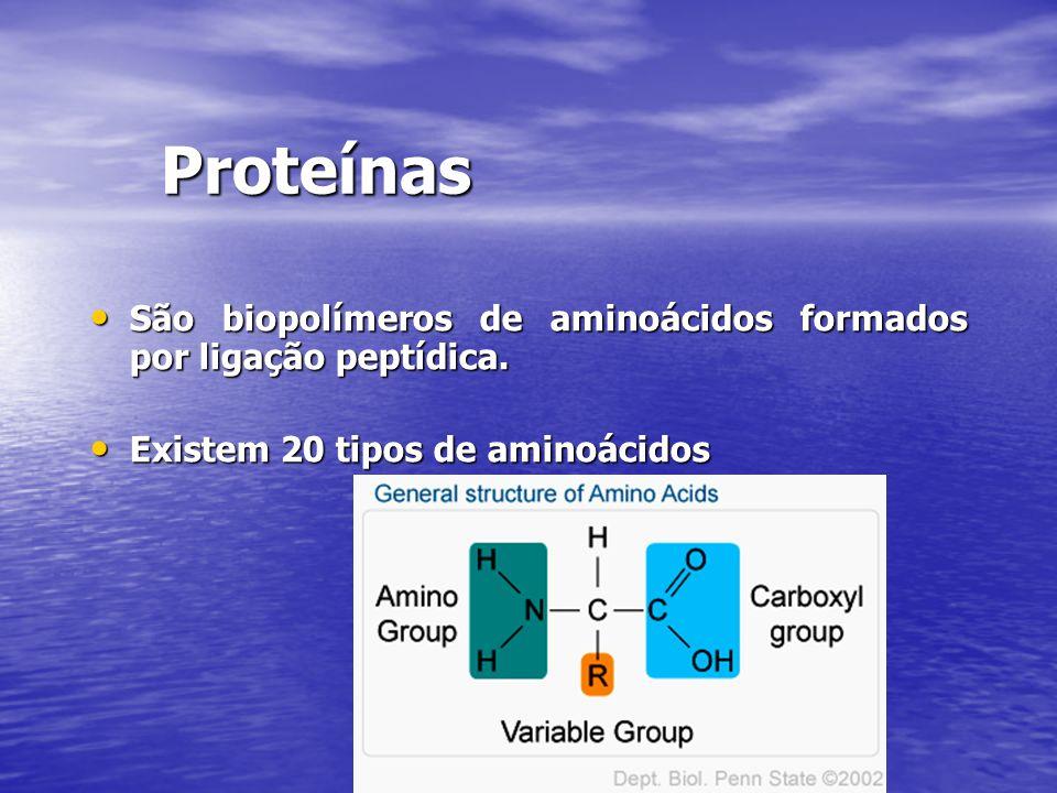 Proteínas São biopolímeros de aminoácidos formados por ligação peptídica. São biopolímeros de aminoácidos formados por ligação peptídica. Existem 20 t