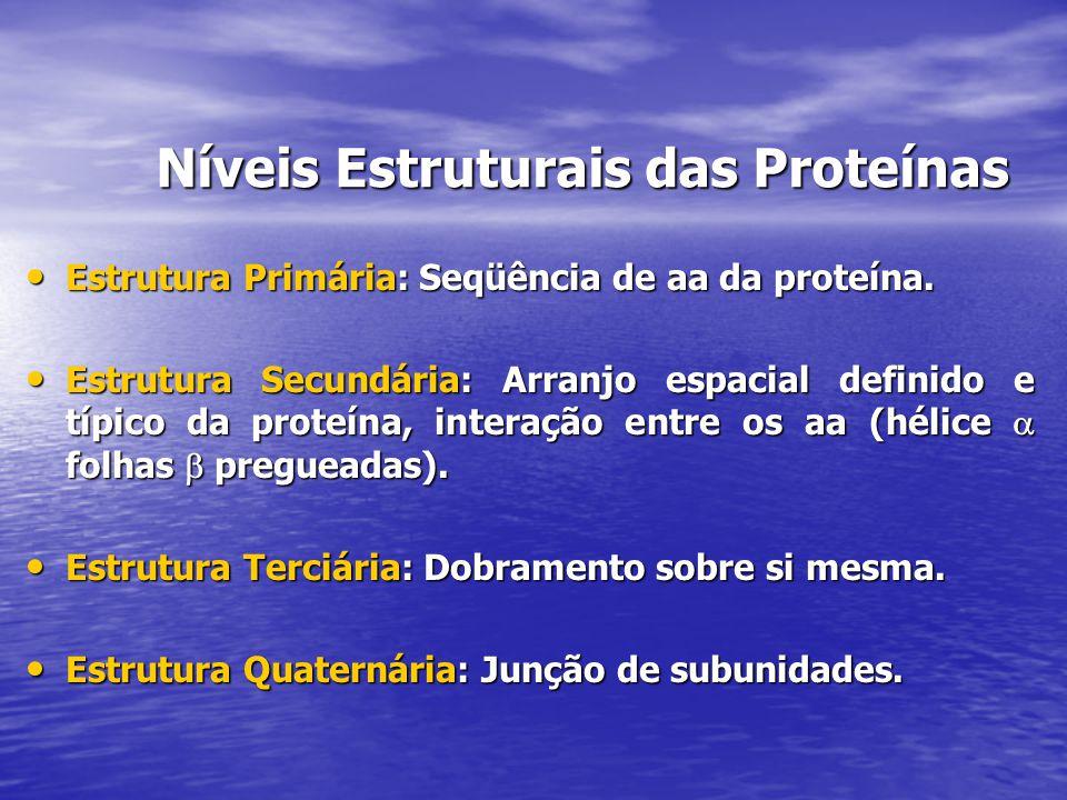Níveis Estruturais das Proteínas Estrutura Primária: Seqüência de aa da proteína. Estrutura Primária: Seqüência de aa da proteína. Estrutura Secundári