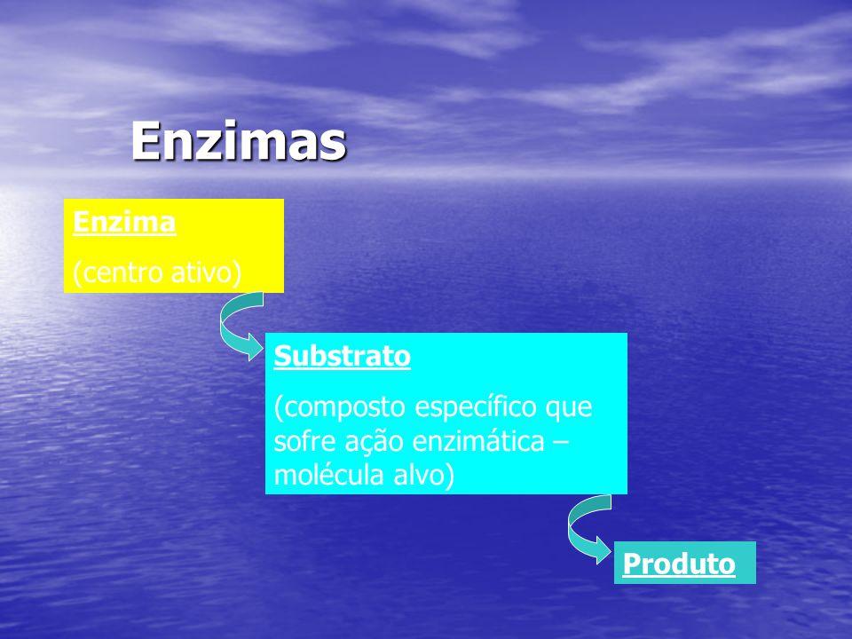 Enzimas Enzima (centro ativo) Substrato (composto específico que sofre ação enzimática – molécula alvo) Produto
