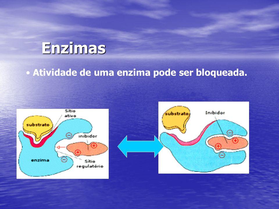 Enzimas Atividade de uma enzima pode ser bloqueada.