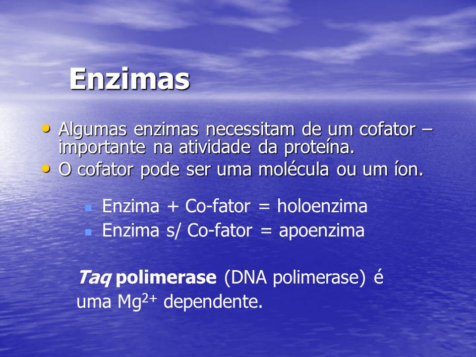 Enzimas Algumas enzimas necessitam de um cofator – importante na atividade da proteína. Algumas enzimas necessitam de um cofator – importante na ativi