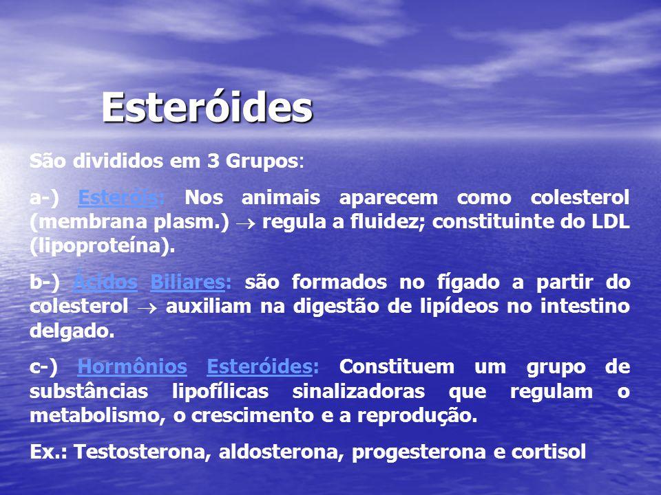 Esteróides São divididos em 3 Grupos: a-) Esteróis: Nos animais aparecem como colesterol (membrana plasm.)  regula a fluidez; constituinte do LDL (li