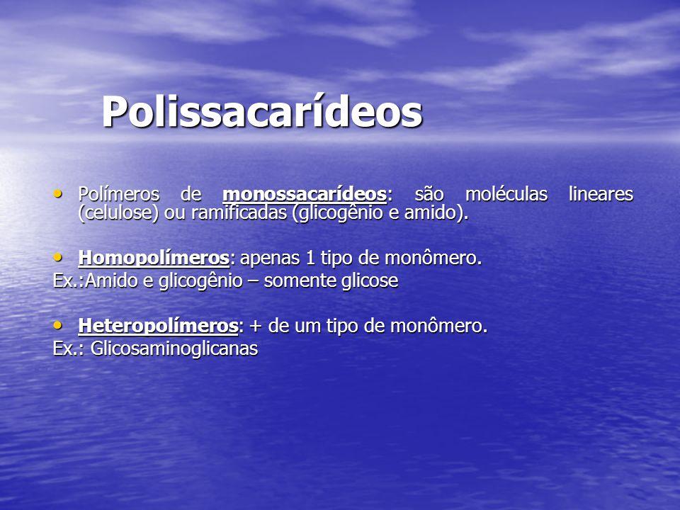 Polissacarídeos Polímeros de monossacarídeos: são moléculas lineares (celulose) ou ramificadas (glicogênio e amido). Polímeros de monossacarídeos: são