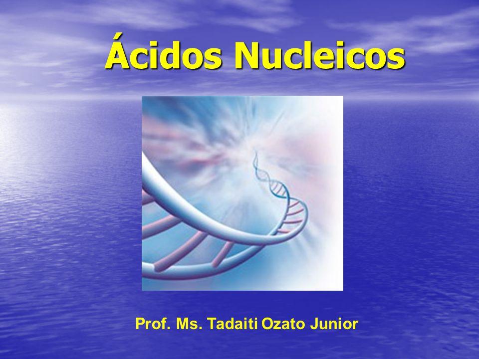 Ácidos Nucleicos Prof. Ms. Tadaiti Ozato Junior