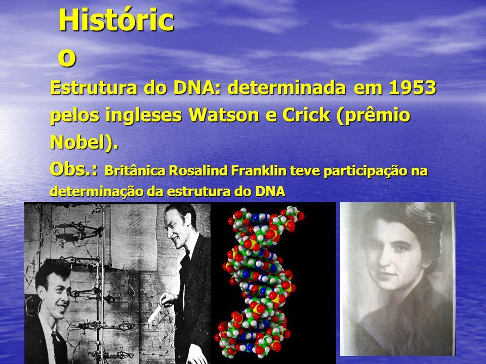 Históric o Estrutura do DNA: determinada em 1953 pelos ingleses Watson e Crick (prêmio Nobel). Obs.: Britânica Rosalind Franklin teve participação na