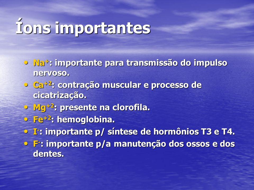 Íons importantes Na + : importante para transmissão do impulso nervoso. Na + : importante para transmissão do impulso nervoso. Ca +2 : contração muscu