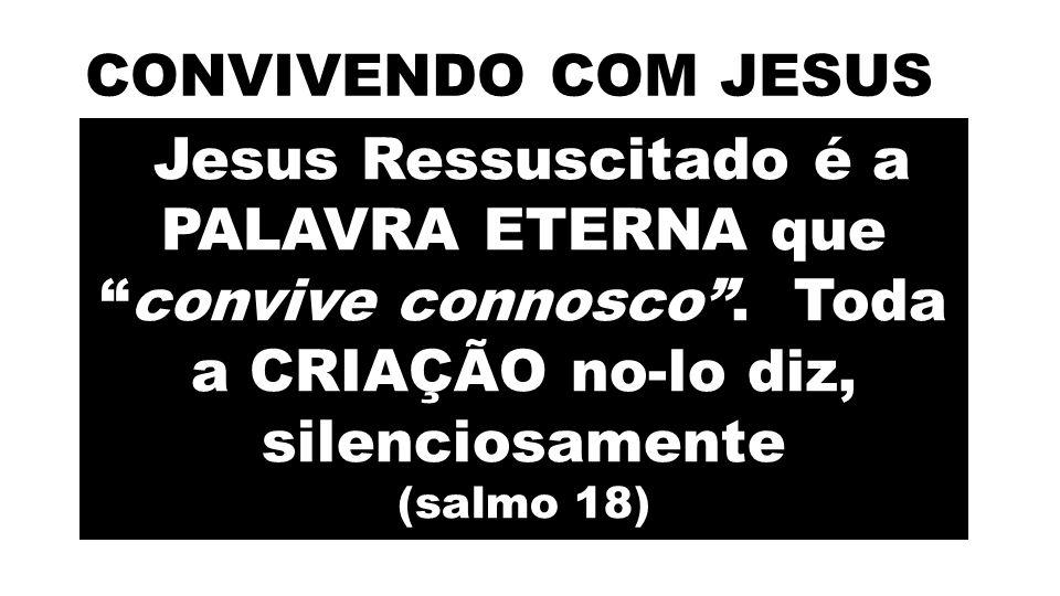 Frequentemente abandonamos o Poço da SABEDORIA de Deus, que nos daria a Paz.