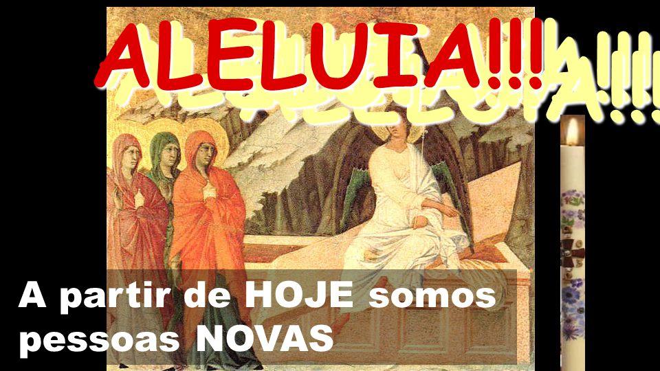 As mulheres, pioneiras na FÉ, buscam Jesus.O Ressuscitado torna-as apóstolas dos apóstolos.