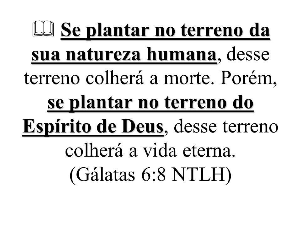 Se plantar no terreno da sua natureza humana se plantar no terreno do Espírito de Deus  Se plantar no terreno da sua natureza humana, desse terreno c