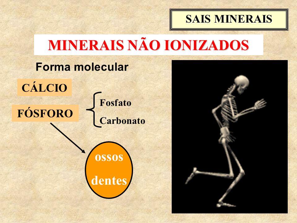 MINERAIS NÃO IONIZADOS CÁLCIO Fosfato Carbonato ossos dentes SAIS MINERAIS Forma molecular FÓSFORO