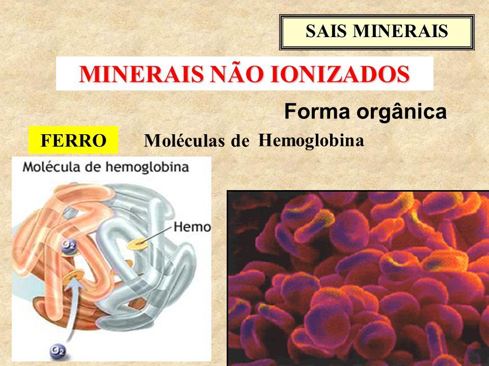 FERROMoléculas de SAIS MINERAIS Forma orgânica Hemoglobina MINERAIS NÃO IONIZADOS