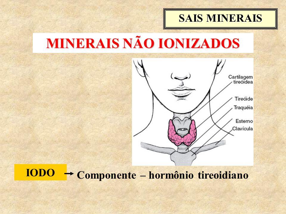 SAIS MINERAIS IODO Componente – hormônio tireoidiano MINERAIS NÃO IONIZADOS