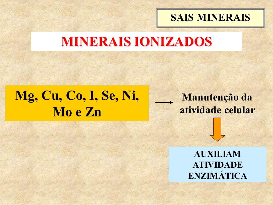 Mg, Cu, Co, I, Se, Ni, Mo e Zn Manutenção da atividade celular SAIS MINERAIS AUXILIAM ATIVIDADE ENZIMÁTICA MINERAIS IONIZADOS