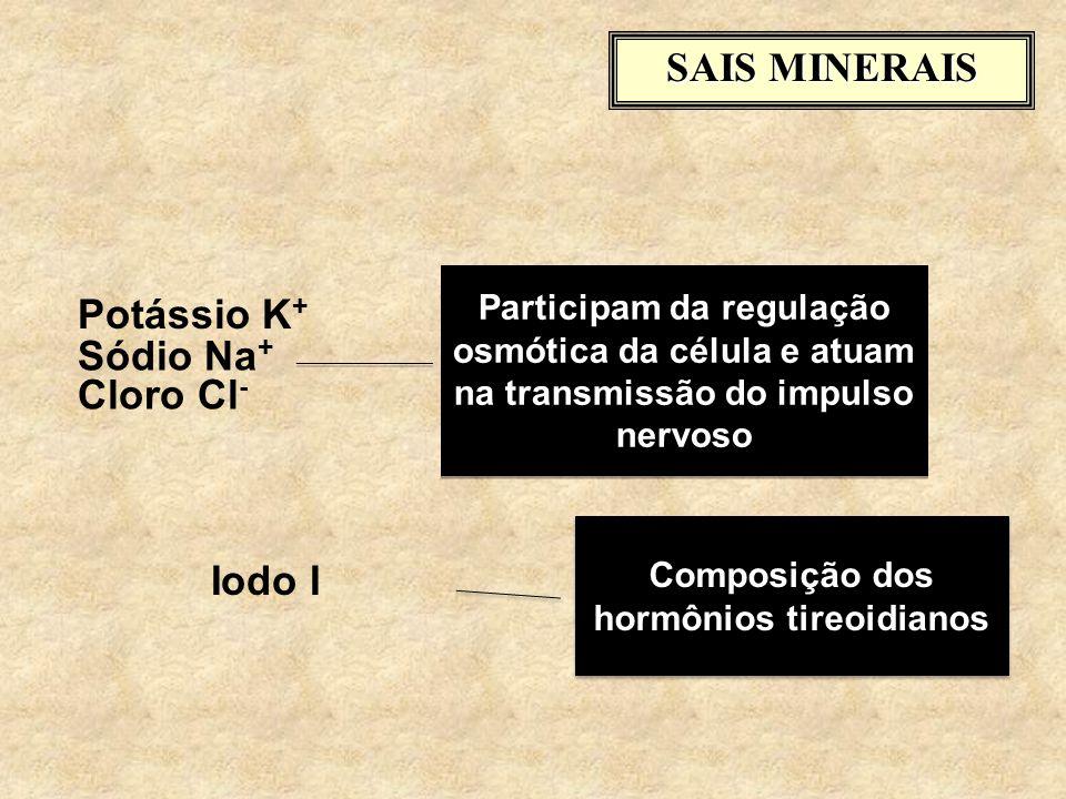 SAIS MINERAIS Potássio K + Participam da regulação osmótica da célula e atuam na transmissão do impulso nervoso Iodo I Composição dos hormônios tireoidianos Sódio Na + Cloro Cl -