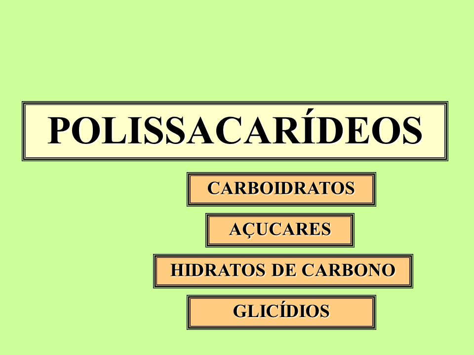 POLISSACARÍDEOS CARBOIDRATOS AÇUCARES HIDRATOS DE CARBONO GLICÍDIOS