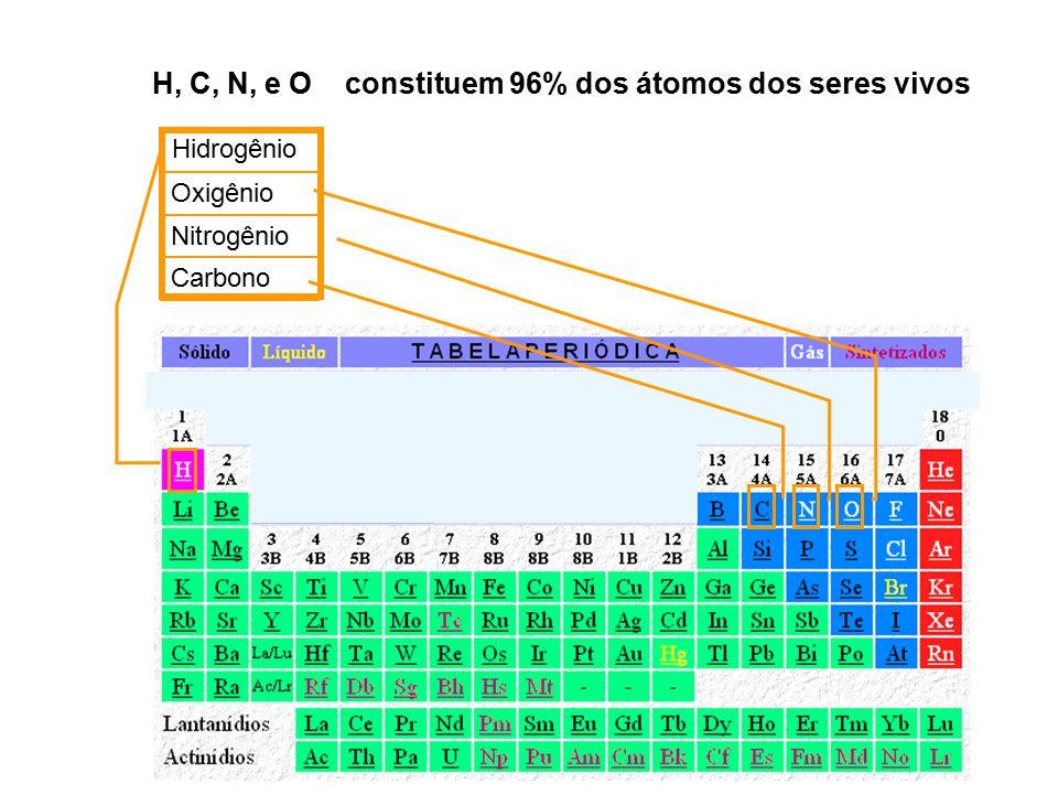 Hidrogênio Nitrogênio Oxigênio Carbono H, C, N, e O constituem 96% dos átomos dos seres vivos