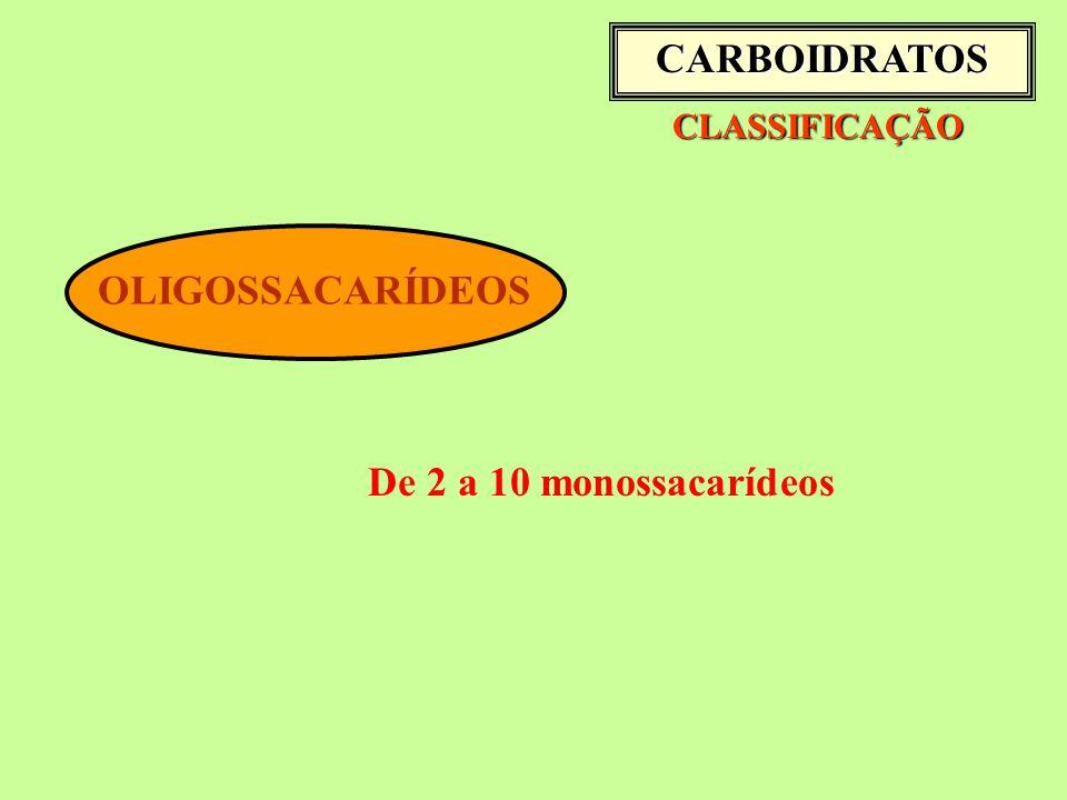CLASSIFICAÇÃO CLASSIFICAÇÃO OLIGOSSACARÍDEOS De 2 a 10 monossacarídeos CARBOIDRATOS