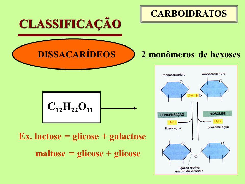 DISSACARÍDEOS2 monômeros de hexoses C 12 H 22 O 11 Ex.