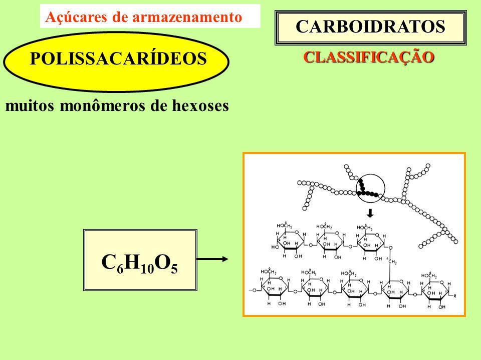 CLASSIFICAÇÃO CLASSIFICAÇÃO POLISSACARÍDEOS muitos monômeros de hexoses C 6 H 10 O 5 CARBOIDRATOS Açúcares de armazenamento