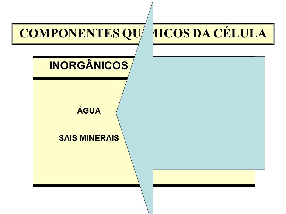 COMPONENTES QUÍMICOS DA CÉLULAINORGÂNICOS ÁGUA SAIS MINERAISORGÂNICOS CARBOIDRATOS ÁCIDOS GRAXOS AMINOÁCIDOS NUCLEOTÍDEOS